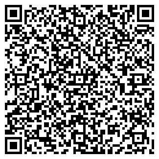 QR-код с контактной информацией организации ДИ ЭЙЧ ЭЛ Г.АСТАНА,