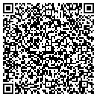 QR-код с контактной информацией организации № 193
