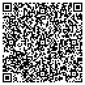 QR-код с контактной информацией организации № 300