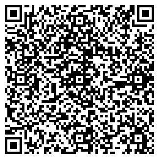 QR-код с контактной информацией организации ГОУ ШКОЛА № 197