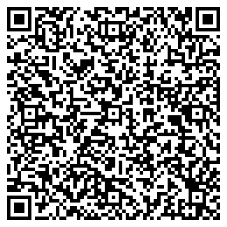QR-код с контактной информацией организации НА ДНЕ