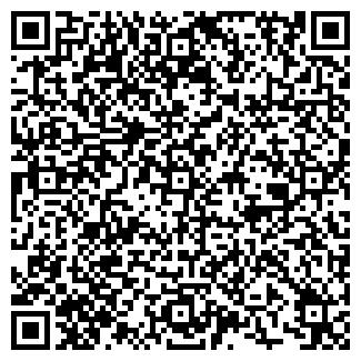 QR-код с контактной информацией организации ЗВЕЗДА