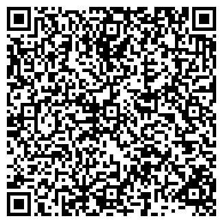 QR-код с контактной информацией организации BABOCHKA