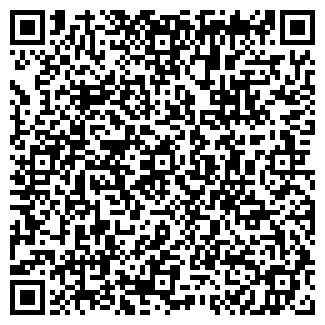 QR-код с контактной информацией организации ПАЛЕМА, ООО