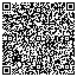 QR-код с контактной информацией организации № 172