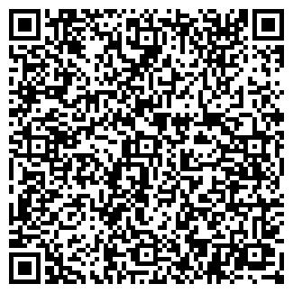 QR-код с контактной информацией организации ШИНИНА, ЧП