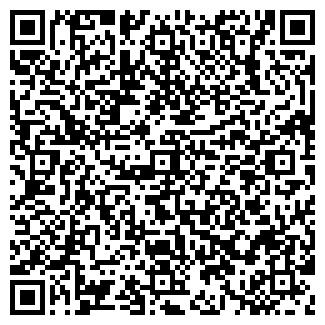 QR-код с контактной информацией организации ДОЛЬКА ЛЕТА