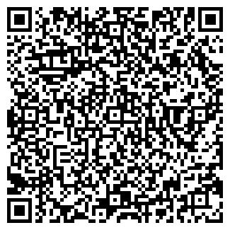 QR-код с контактной информацией организации № 95