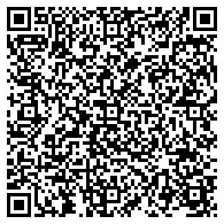 QR-код с контактной информацией организации ТЭИЛ, ООО