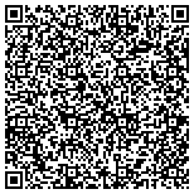QR-код с контактной информацией организации НОЛИКИ ШКОЛА ЭСТЕТИЧЕСКОГО ВОСПИТАНИЯ