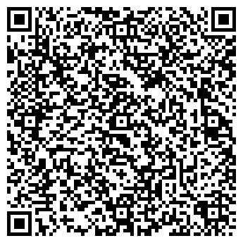 QR-код с контактной информацией организации НИКОЛАЕВ Н.Н., ЧП