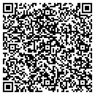 QR-код с контактной информацией организации РУССКАЯ ИКОНА, ТОО