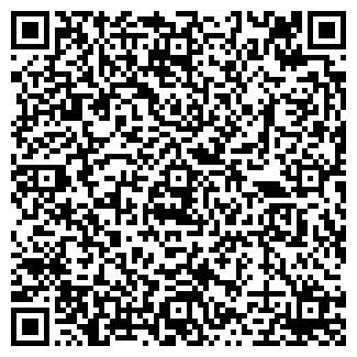 QR-код с контактной информацией организации № 175