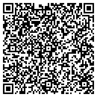 QR-код с контактной информацией организации ГИЗИС, ООО
