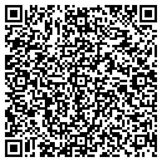QR-код с контактной информацией организации ЧЕЛСИ