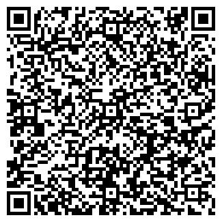 QR-код с контактной информацией организации ИНСТРУМЕНТЫ STIHL