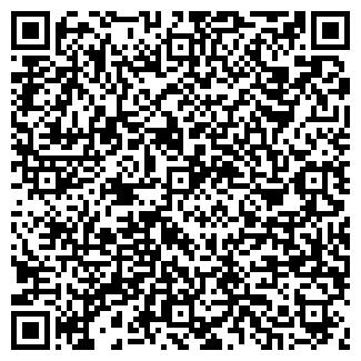 QR-код с контактной информацией организации НОВИНСКОЕ