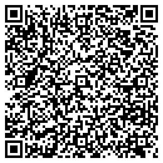 QR-код с контактной информацией организации МИР АУДИ