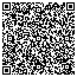 QR-код с контактной информацией организации ДИЗТЕХНИКА