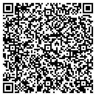 QR-код с контактной информацией организации PLATINUM