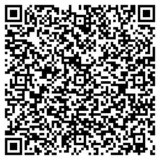 QR-код с контактной информацией организации АЛИС-КОЛОР