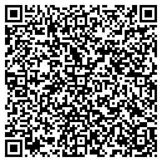 QR-код с контактной информацией организации BLACK BUG