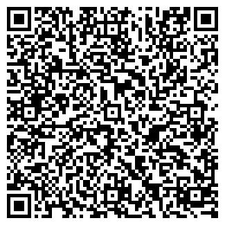 QR-код с контактной информацией организации ИП Мега Успех