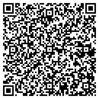 QR-код с контактной информацией организации ООО РАЙС-АРТ