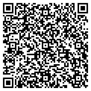 QR-код с контактной информацией организации ТЕЛЕМИР, ООО