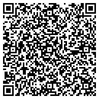QR-код с контактной информацией организации СНЕГИН А.П.