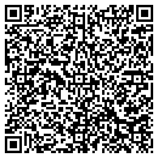 QR-код с контактной информацией организации ИП ЛУШЕВА