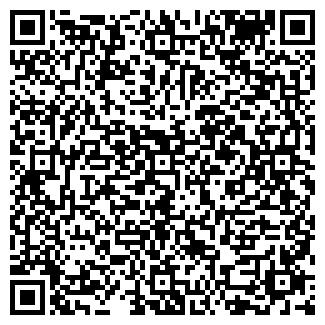 QR-код с контактной информацией организации ВАСИЛЕК