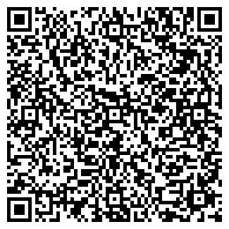 QR-код с контактной информацией организации ИП КОПЫЛОВ