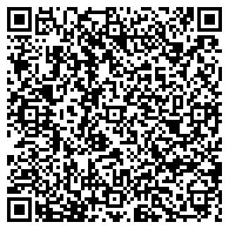 QR-код с контактной информацией организации ВЕСНА СПК