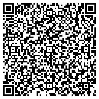 QR-код с контактной информацией организации КЕМИКА, ООО