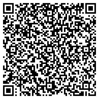 QR-код с контактной информацией организации МИНИ, ООО