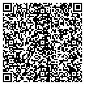 QR-код с контактной информацией организации ВУД ВИП, ООО