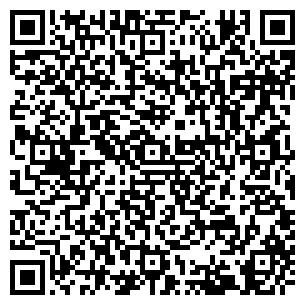 QR-код с контактной информацией организации БОРКИ, ОАО