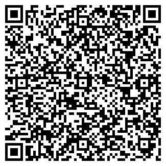 QR-код с контактной информацией организации КОЛОР, ЧП