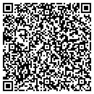 QR-код с контактной информацией организации ХРИЗАНТЕМА, ООО