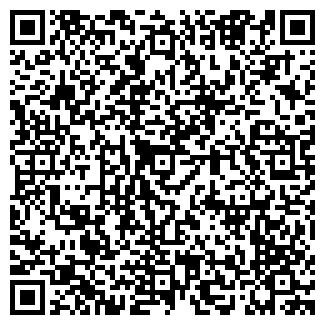 QR-код с контактной информацией организации НОЛДЕКС, ООО