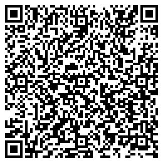 QR-код с контактной информацией организации РИНГ ФИРМА
