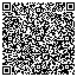 QR-код с контактной информацией организации ВАСИЛЬКИ