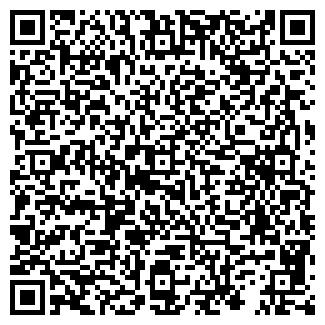 QR-код с контактной информацией организации ООО Звезда