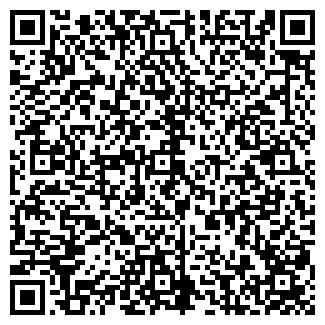 QR-код с контактной информацией организации ПАЛЛАДА-С, ООО