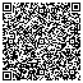 QR-код с контактной информацией организации ООО ВЫЛЬ КЕРКА