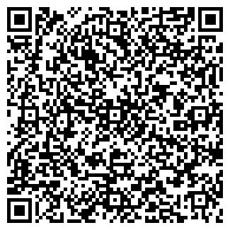 QR-код с контактной информацией организации ДЕЙСТВИЕ, ООО