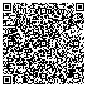 QR-код с контактной информацией организации СТРОЙМЕТАЛЛСЕРВИС