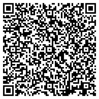 QR-код с контактной информацией организации ДИССЕ
