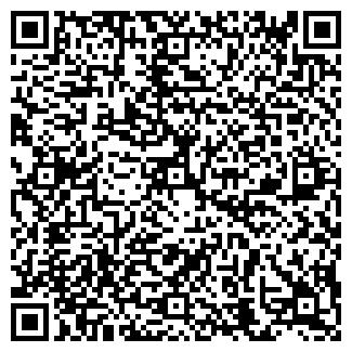QR-код с контактной информацией организации ЛИЛИПУТ